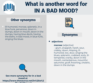 in a bad mood, synonym in a bad mood, another word for in a bad mood, words like in a bad mood, thesaurus in a bad mood