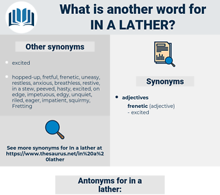 in a lather, synonym in a lather, another word for in a lather, words like in a lather, thesaurus in a lather