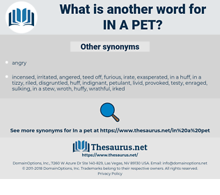 in a pet, synonym in a pet, another word for in a pet, words like in a pet, thesaurus in a pet