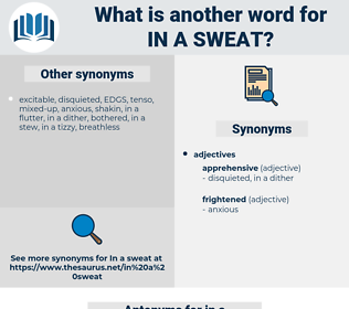 in a sweat, synonym in a sweat, another word for in a sweat, words like in a sweat, thesaurus in a sweat
