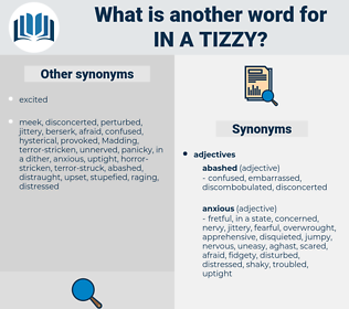 in a tizzy, synonym in a tizzy, another word for in a tizzy, words like in a tizzy, thesaurus in a tizzy