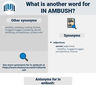 in ambush, synonym in ambush, another word for in ambush, words like in ambush, thesaurus in ambush