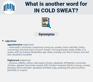 in cold sweat, synonym in cold sweat, another word for in cold sweat, words like in cold sweat, thesaurus in cold sweat