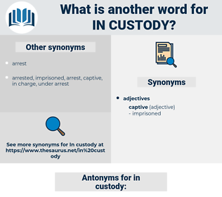 in custody, synonym in custody, another word for in custody, words like in custody, thesaurus in custody