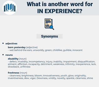 in-experience, synonym in-experience, another word for in-experience, words like in-experience, thesaurus in-experience