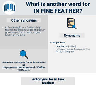 in fine feather, synonym in fine feather, another word for in fine feather, words like in fine feather, thesaurus in fine feather