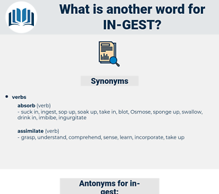 in-gest, synonym in-gest, another word for in-gest, words like in-gest, thesaurus in-gest