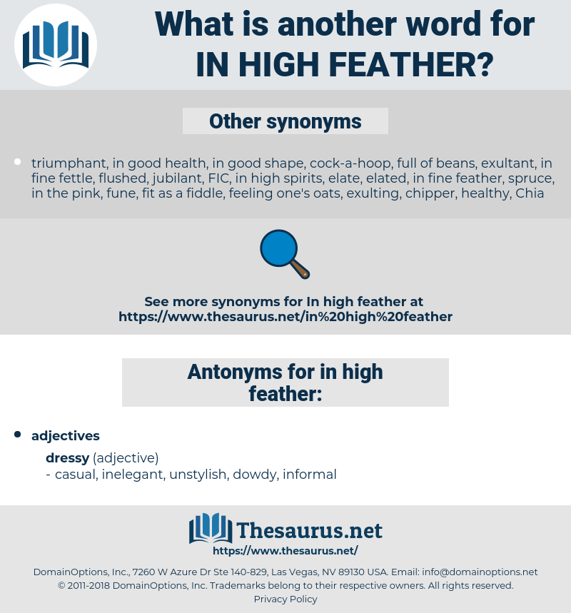 in high feather, synonym in high feather, another word for in high feather, words like in high feather, thesaurus in high feather
