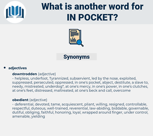 in pocket, synonym in pocket, another word for in pocket, words like in pocket, thesaurus in pocket