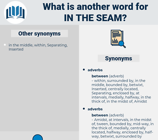 in the seam, synonym in the seam, another word for in the seam, words like in the seam, thesaurus in the seam