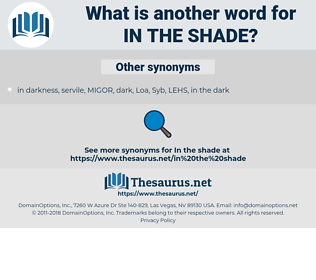in the shade, synonym in the shade, another word for in the shade, words like in the shade, thesaurus in the shade