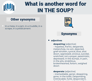 in the soup, synonym in the soup, another word for in the soup, words like in the soup, thesaurus in the soup