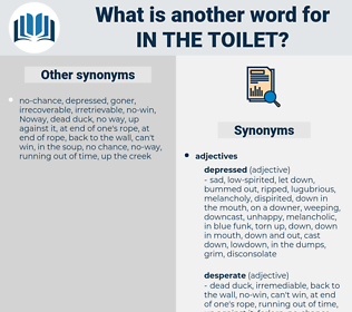 in the toilet, synonym in the toilet, another word for in the toilet, words like in the toilet, thesaurus in the toilet
