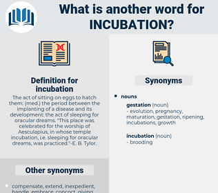 incubation, synonym incubation, another word for incubation, words like incubation, thesaurus incubation
