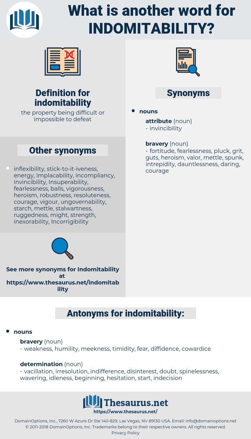 indomitability, synonym indomitability, another word for indomitability, words like indomitability, thesaurus indomitability