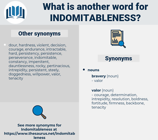 indomitableness, synonym indomitableness, another word for indomitableness, words like indomitableness, thesaurus indomitableness