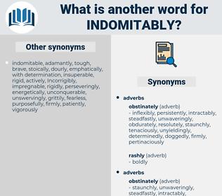 indomitably, synonym indomitably, another word for indomitably, words like indomitably, thesaurus indomitably