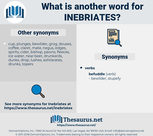 inebriates, synonym inebriates, another word for inebriates, words like inebriates, thesaurus inebriates