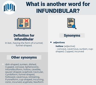 Infundibular, synonym Infundibular, another word for Infundibular, words like Infundibular, thesaurus Infundibular