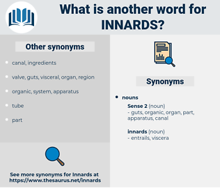 innards, synonym innards, another word for innards, words like innards, thesaurus innards