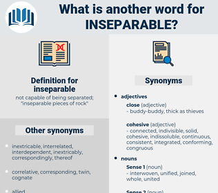 inseparable, synonym inseparable, another word for inseparable, words like inseparable, thesaurus inseparable