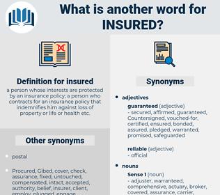 insured, synonym insured, another word for insured, words like insured, thesaurus insured