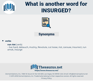 insurged, synonym insurged, another word for insurged, words like insurged, thesaurus insurged