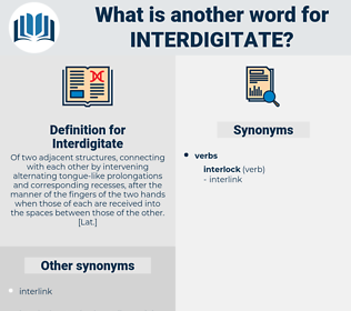 Interdigitate, synonym Interdigitate, another word for Interdigitate, words like Interdigitate, thesaurus Interdigitate