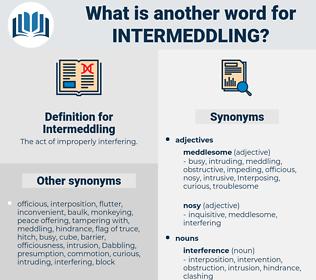 Intermeddling, synonym Intermeddling, another word for Intermeddling, words like Intermeddling, thesaurus Intermeddling