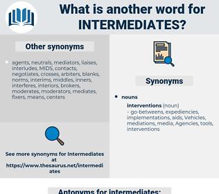 intermediates, synonym intermediates, another word for intermediates, words like intermediates, thesaurus intermediates
