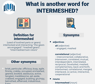 intermeshed, synonym intermeshed, another word for intermeshed, words like intermeshed, thesaurus intermeshed