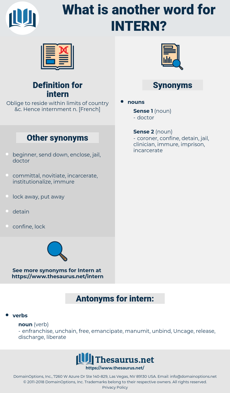 intern, synonym intern, another word for intern, words like intern, thesaurus intern