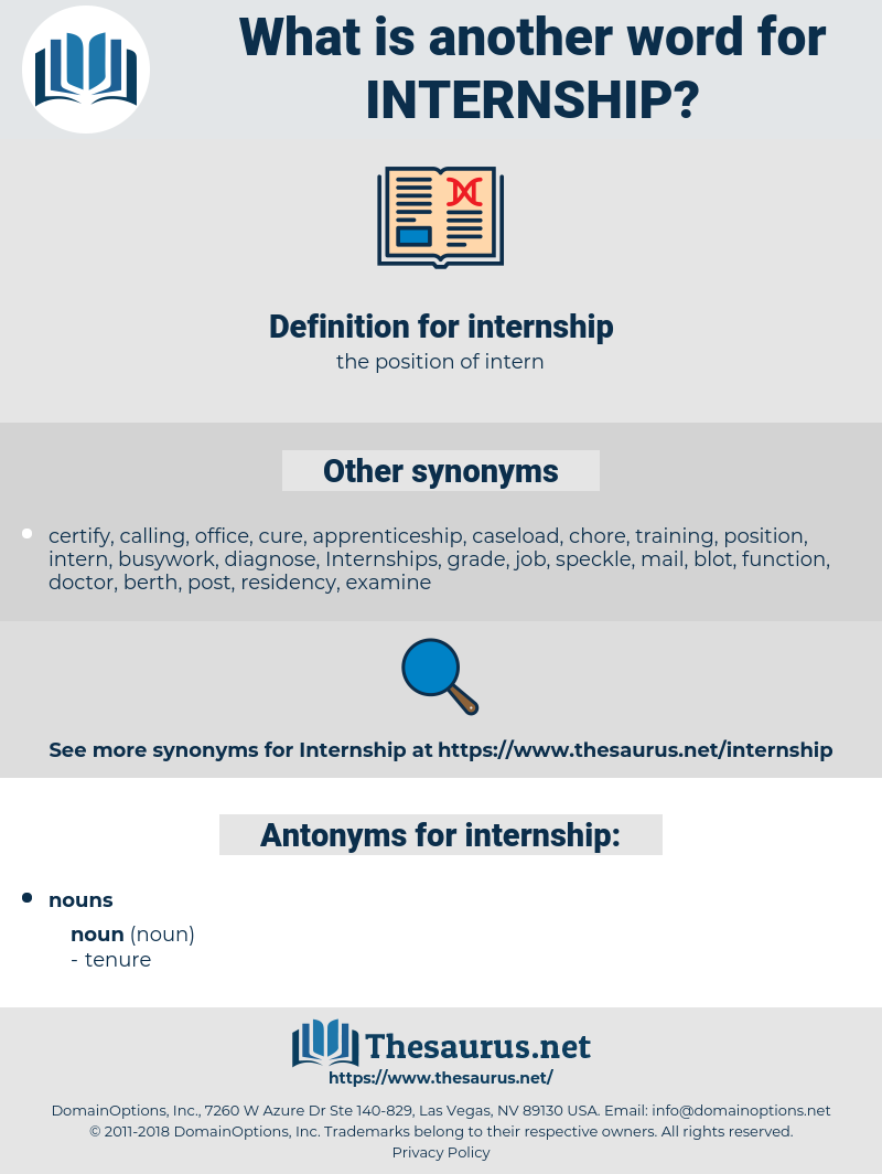 other words for internship
