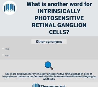 intrinsically photosensitive retinal ganglion cells, synonym intrinsically photosensitive retinal ganglion cells, another word for intrinsically photosensitive retinal ganglion cells, words like intrinsically photosensitive retinal ganglion cells, thesaurus intrinsically photosensitive retinal ganglion cells