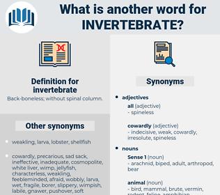 invertebrate, synonym invertebrate, another word for invertebrate, words like invertebrate, thesaurus invertebrate