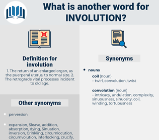 involution, synonym involution, another word for involution, words like involution, thesaurus involution