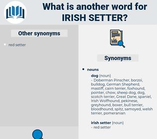 Irish Setter, synonym Irish Setter, another word for Irish Setter, words like Irish Setter, thesaurus Irish Setter