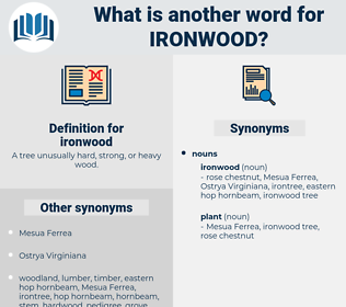 ironwood, synonym ironwood, another word for ironwood, words like ironwood, thesaurus ironwood