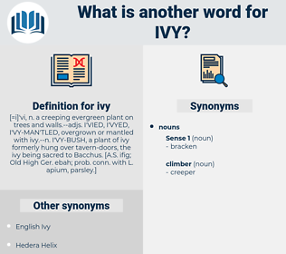 ivy, synonym ivy, another word for ivy, words like ivy, thesaurus ivy