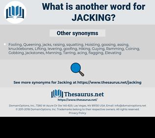 jacking, synonym jacking, another word for jacking, words like jacking, thesaurus jacking