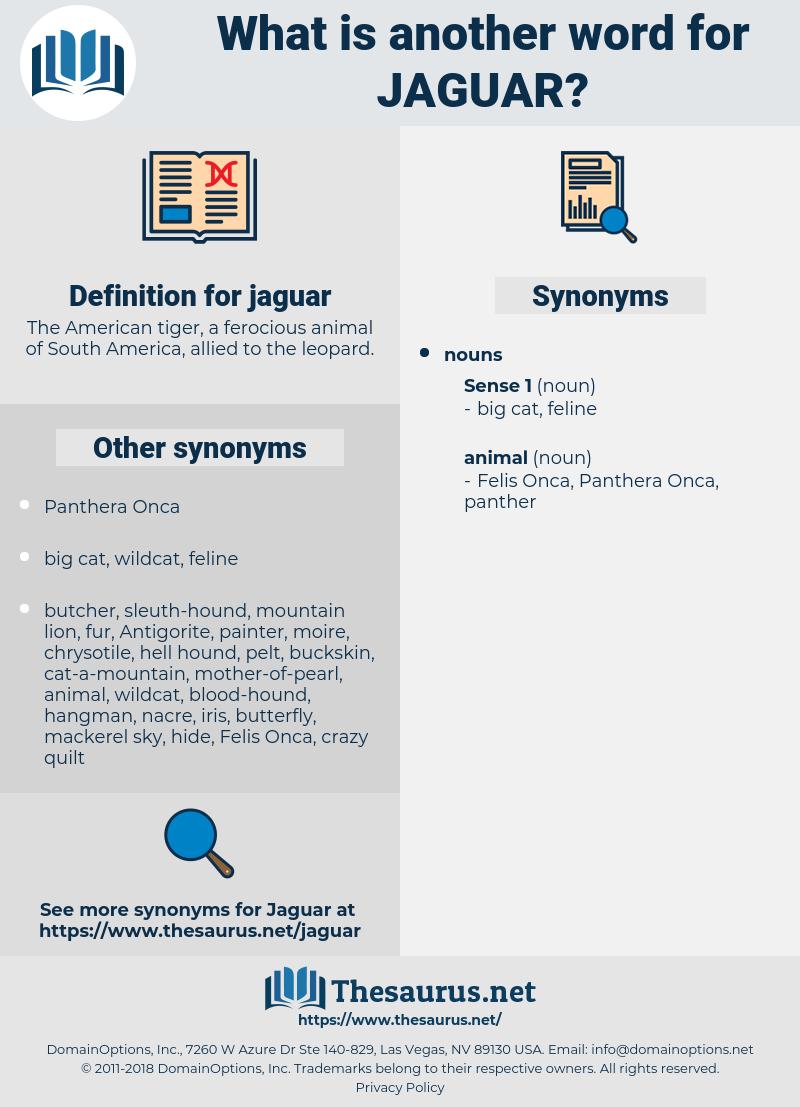 jaguar, synonym jaguar, another word for jaguar, words like jaguar, thesaurus jaguar