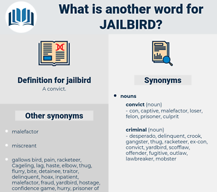 jailbird, synonym jailbird, another word for jailbird, words like jailbird, thesaurus jailbird