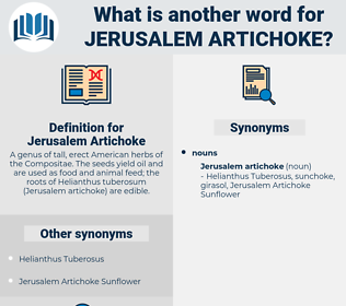 Jerusalem Artichoke, synonym Jerusalem Artichoke, another word for Jerusalem Artichoke, words like Jerusalem Artichoke, thesaurus Jerusalem Artichoke