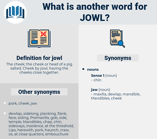 jowl, synonym jowl, another word for jowl, words like jowl, thesaurus jowl