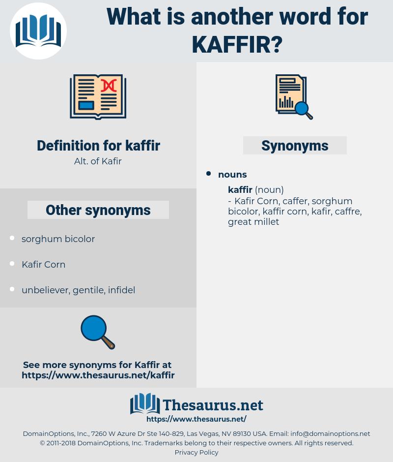 kaffir, synonym kaffir, another word for kaffir, words like kaffir, thesaurus kaffir