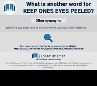 keep ones eyes peeled, synonym keep ones eyes peeled, another word for keep ones eyes peeled, words like keep ones eyes peeled, thesaurus keep ones eyes peeled