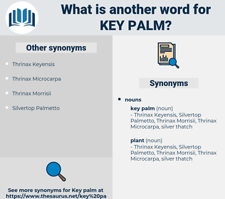 key palm, synonym key palm, another word for key palm, words like key palm, thesaurus key palm