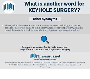 keyhole surgery, synonym keyhole surgery, another word for keyhole surgery, words like keyhole surgery, thesaurus keyhole surgery