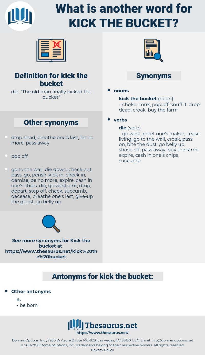 kick the bucket, synonym kick the bucket, another word for kick the bucket, words like kick the bucket, thesaurus kick the bucket