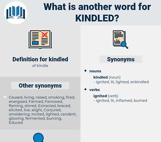 kindled, synonym kindled, another word for kindled, words like kindled, thesaurus kindled